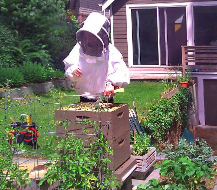 Superb PSBA Backyard Beekeeper