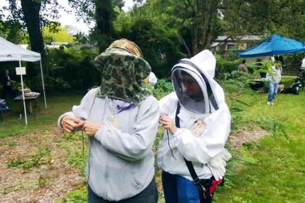 myster-beekeeper