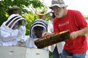 Peter Borst teaching bees